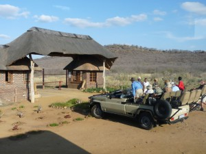 Madikwe Game Resort